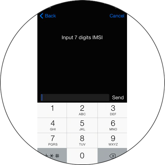 IMSI for r-sim gevey unlock carrier